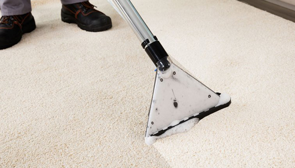 Professional Carpet Cleaning Duluth Ga Taraba Home Review
